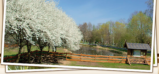Biberhof im Spreewald