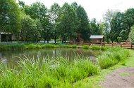 2.000 m² großer Naturteich auf dem Biberhof